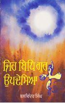 Picture of Jeh Bidh Gur Updesaya