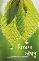 Picture of Piyar Athru