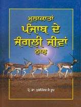 Picture of Mulakatan Punjab De Jungli Jeevan Naal